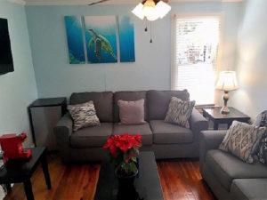 Turtles Nest room living room